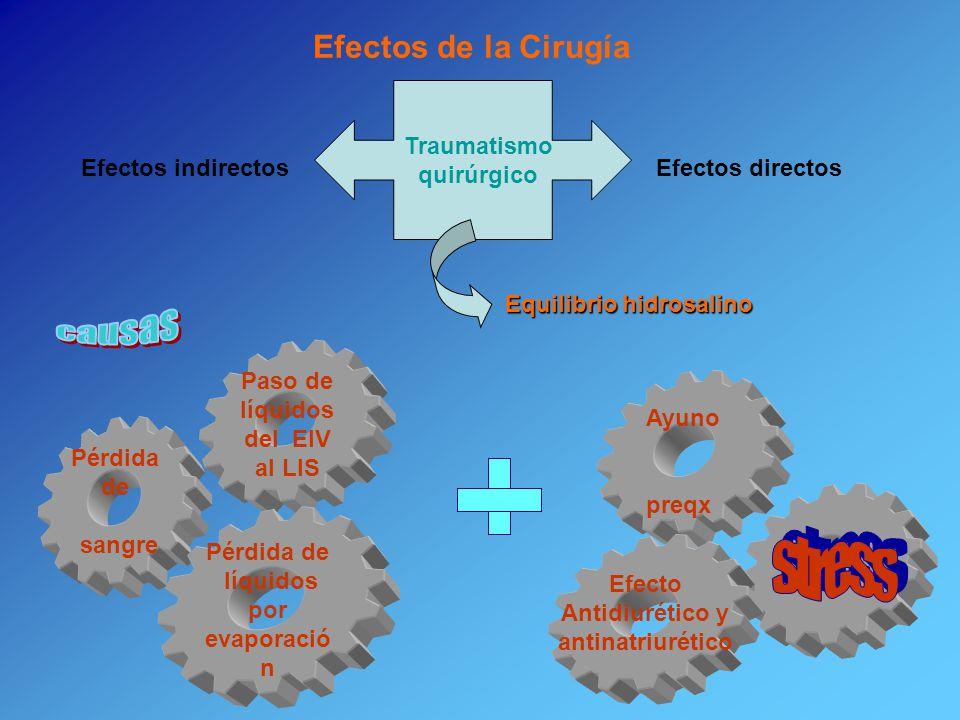 Paso de líquidos del EIV al LIS Pérdida de sangre Pérdida de líquidos por evaporació n Traumatismo quirúrgico Efectos directosEfectos indirectos Equil