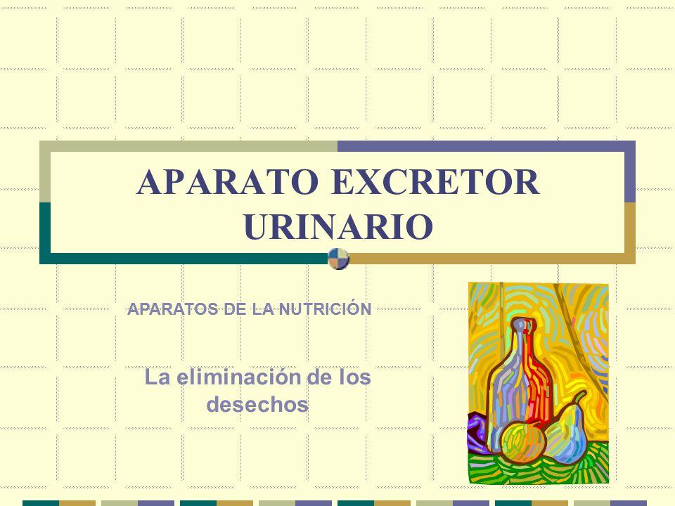 APARATO EXCRETOR URINARIO APARATOS DE LA NUTRICIÓN La eliminación de los desechos