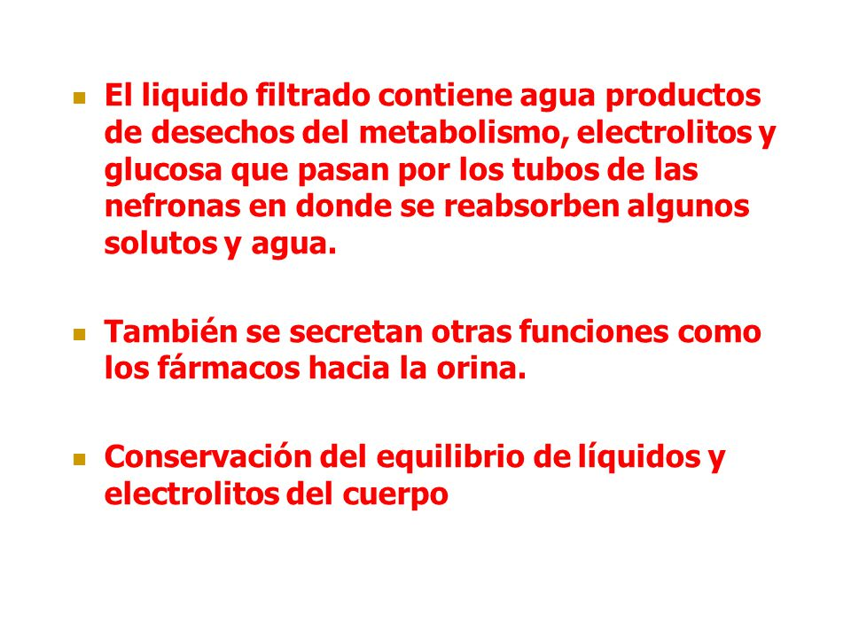 El liquido filtrado contiene agua productos de desechos del metabolismo, electrolitos y glucosa que pasan por los tubos de las nefronas en donde se re