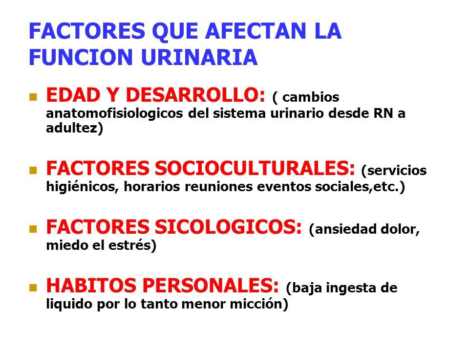 FACTORES QUE AFECTAN LA FUNCION URINARIA EDAD Y DESARROLLO: ( cambios anatomofisiologicos del sistema urinario desde RN a adultez) FACTORES SOCIOCULTU