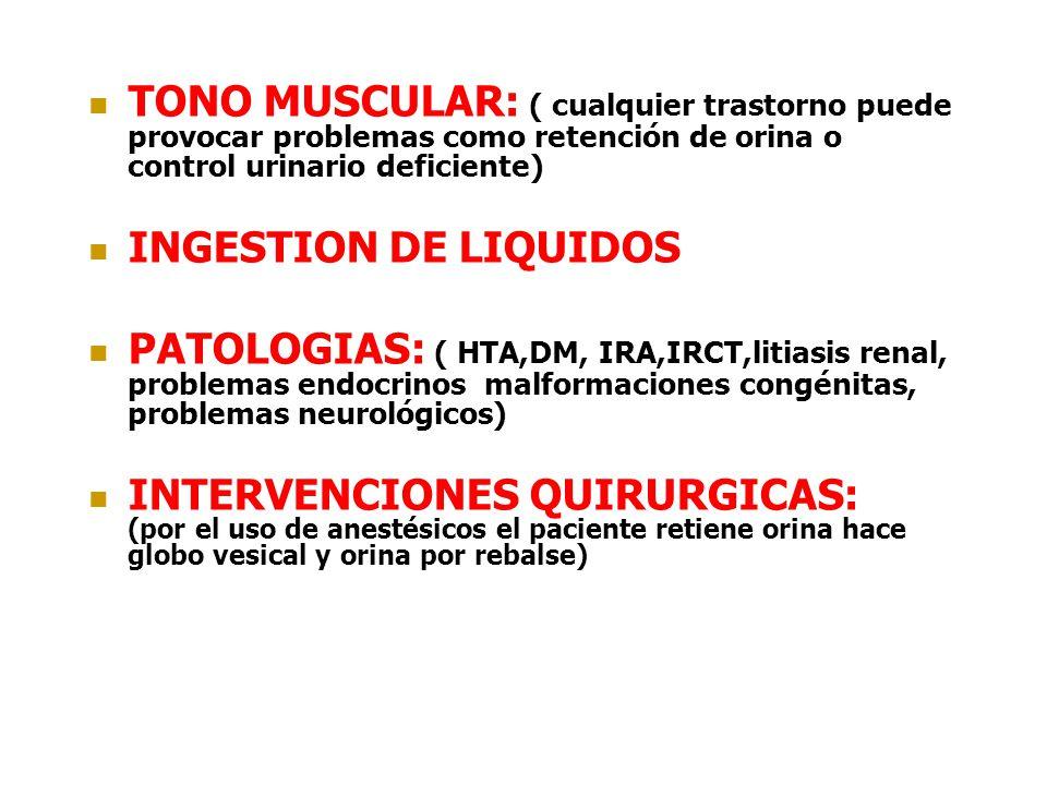 TONO MUSCULAR: ( cualquier trastorno puede provocar problemas como retención de orina o control urinario deficiente) INGESTION DE LIQUIDOS PATOLOGIAS: