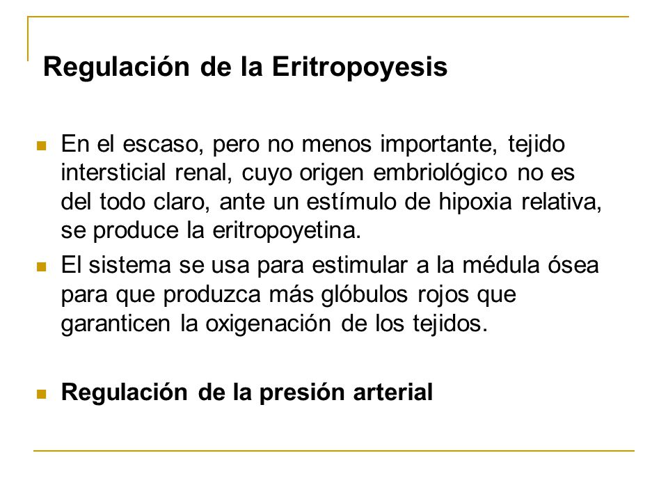 Regulación de la Eritropoyesis En el escaso, pero no menos importante, tejido intersticial renal, cuyo origen embriológico no es del todo claro, ante