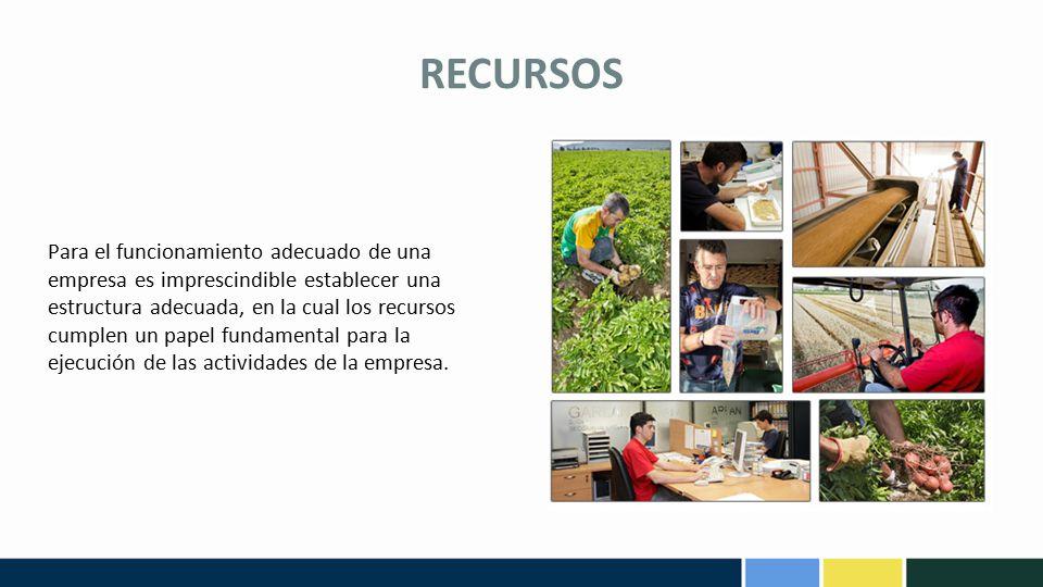 RECURSOS Recurso Humano: Las personas constituyen el recurso más importante en toda organización, ya que son ellas quienes utilizan, diseñan, transforman y perfeccionan los demás recursos.