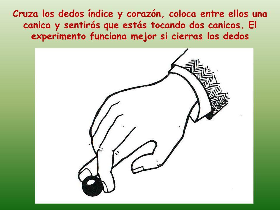 Coloca dos monedas grandes entre los dedos, a continuación frota una contra la otra con un movimiento de giro rápido hacia arriba y hacia abajo.