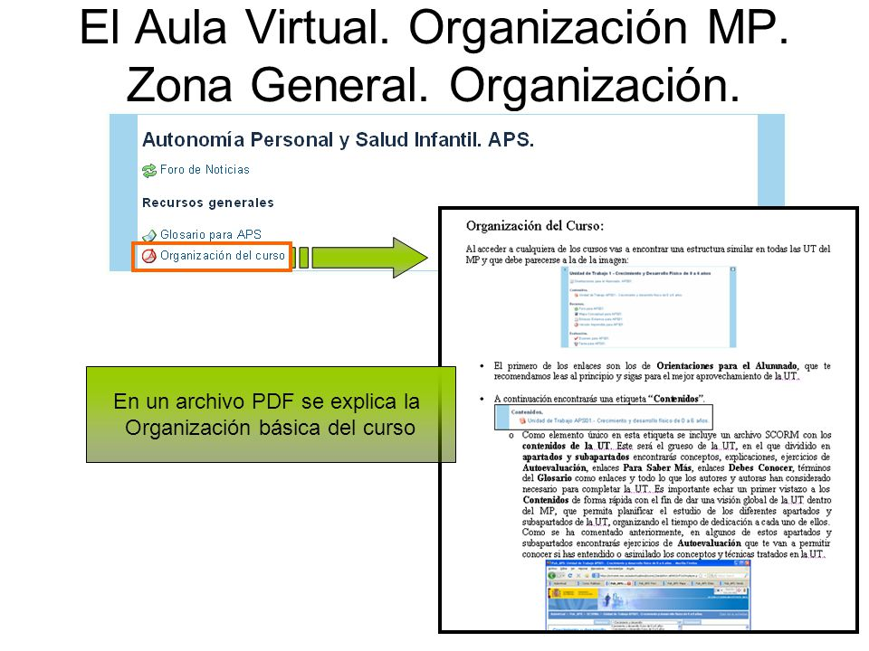 El Aula Virtual. Organización MP. Zona General. Organización.