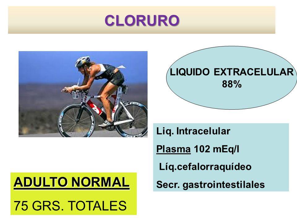 CLORURO LIQUIDO EXTRACELULAR 88% Liq.Intracelular Plasma 102 mEq/l Líq.cefalorraquídeo Secr.