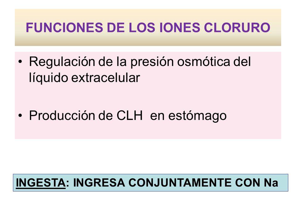 FUNCIONES DE LOS IONES CLORURO Regulación de la presión osmótica del líquido extracelular Producción de CLH en estómago INGESTA: INGRESA CONJUNTAMENTE CON Na