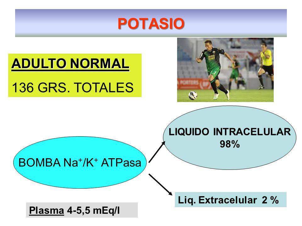 POTASIO LIQUIDO INTRACELULAR 98% ADULTO NORMAL 136 GRS.