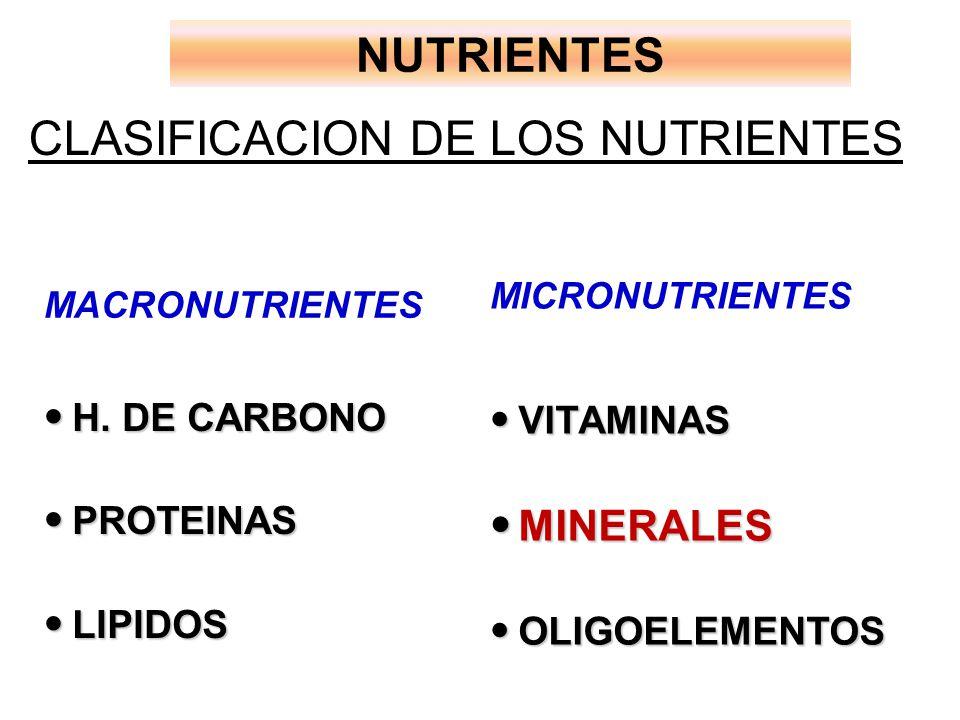 NUTRIENTES CLASIFICACION DE LOS NUTRIENTES H.DE CARBONO H.