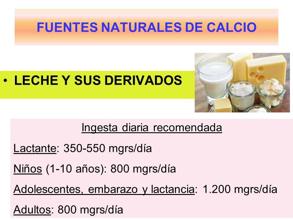 FUENTES NATURALES DE CALCIO LECHE Y SUS DERIVADOS Ingesta diaria recomendada Lactante: 350-550 mgrs/día Niños (1-10 años): 800 mgrs/día Adolescentes, embarazo y lactancia: 1.200 mgrs/día Adultos: 800 mgrs/día