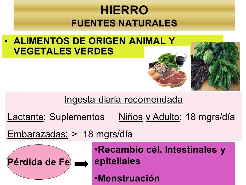 HIERRO FUENTES NATURALES ALIMENTOS DE ORIGEN ANIMAL Y VEGETALES VERDES Ingesta diaria recomendada Lactante: Suplementos Niños y Adulto: 18 mgrs/día Em