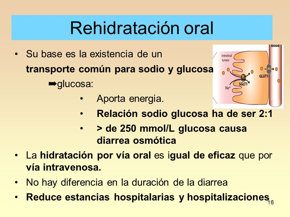 16 Rehidratación oral Su base es la existencia de un transporte común para sodio y glucosa ➡ glucosa: Aporta energia. Relación sodio glucosa ha de se