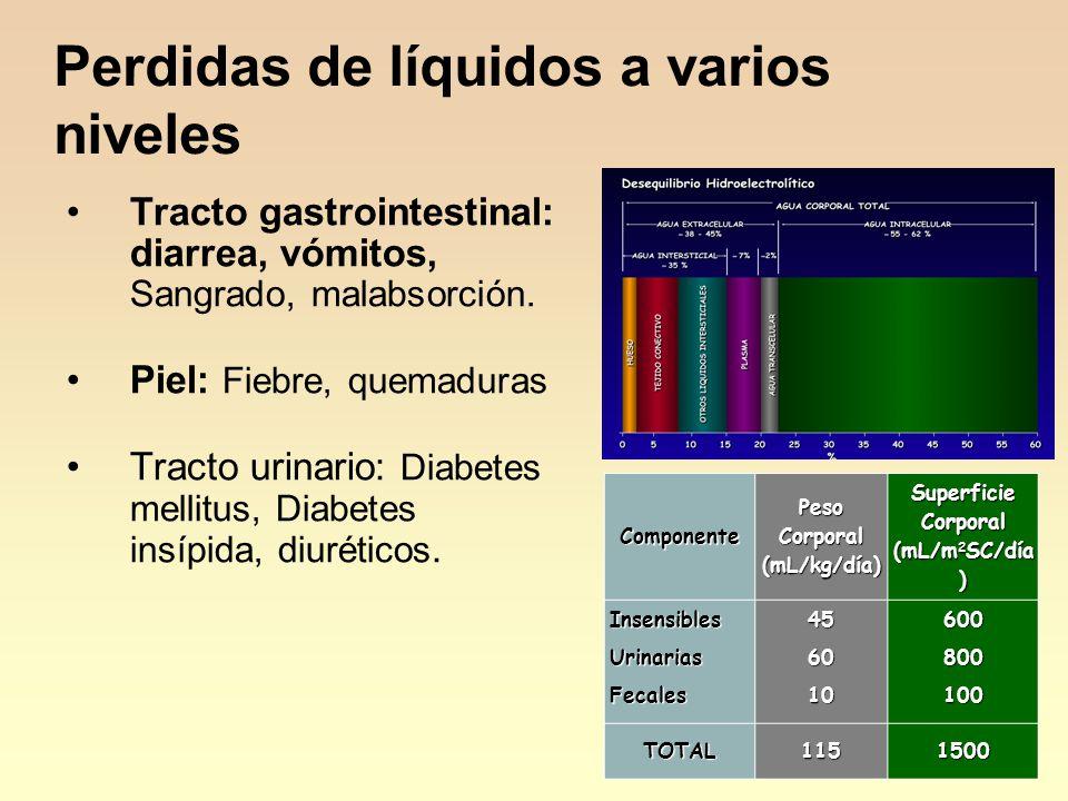 Componente Peso Corporal (mL/kg/día) Superficie Corporal (mL/m 2 SC/día ) InsensiblesUrinariasFecales456010600800100 TOTAL1151500 Tracto gastrointestinal: diarrea, vómitos, Sangrado, malabsorción.