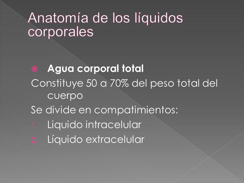  Agua corporal total Constituye 50 a 70% del peso total del cuerpo Se divide en compatimientos: 1. Liquido intracelular 2. Líquido extracelular