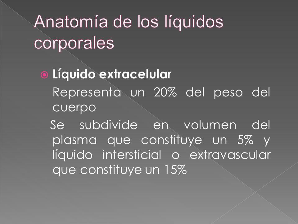  Líquido extracelular Representa un 20% del peso del cuerpo Se subdivide en volumen del plasma que constituye un 5% y líquido intersticial o extravas