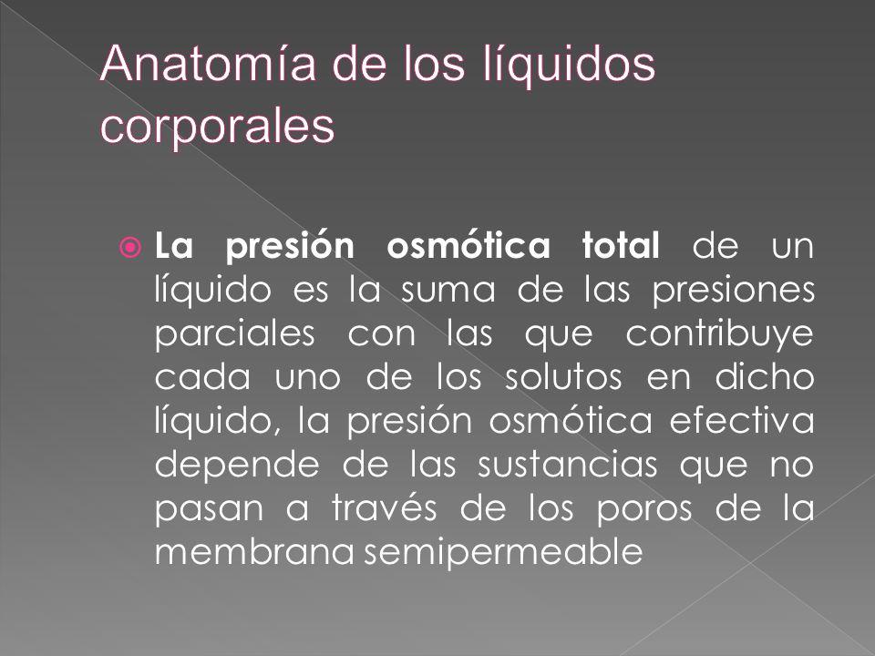  La presión osmótica total de un líquido es la suma de las presiones parciales con las que contribuye cada uno de los solutos en dicho líquido, la pr