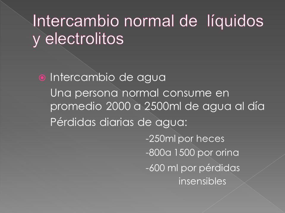  Intercambio de agua Una persona normal consume en promedio 2000 a 2500ml de agua al día Pérdidas diarias de agua: -250ml por heces -800a 1500 por or