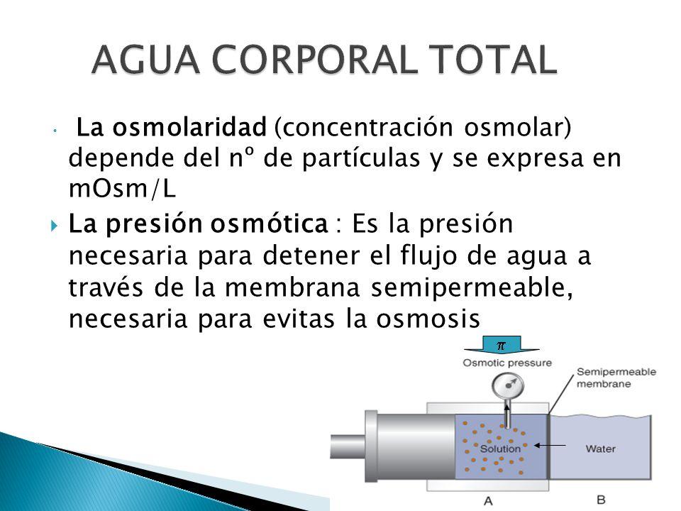 La osmolaridad (concentración osmolar) depende del nº de partículas y se expresa en mOsm/L  La presión osmótica : Es la presión necesaria para detener el flujo de agua a través de la membrana semipermeable, necesaria para evitas la osmosis 