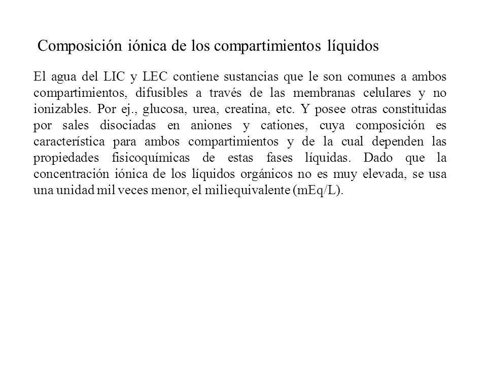 Composición iónica de los líquidos corporales Electrolitos Plasma Líquido intersticial Líquido intracelular (mEq/L) (mEq/Kg H 2 O) (mEq/Kg H 2 O) Aniones Proteínas 17 - 45 Cl - 103 117 3 HCO 3 - 25 28 7 Otros 8 9 155 Total 153 154 210 Cationes Ca +2 5 3 1 Na + 142 145 10 Mg +2 2 2 40 K + 4 4 159 Total 153 154 210
