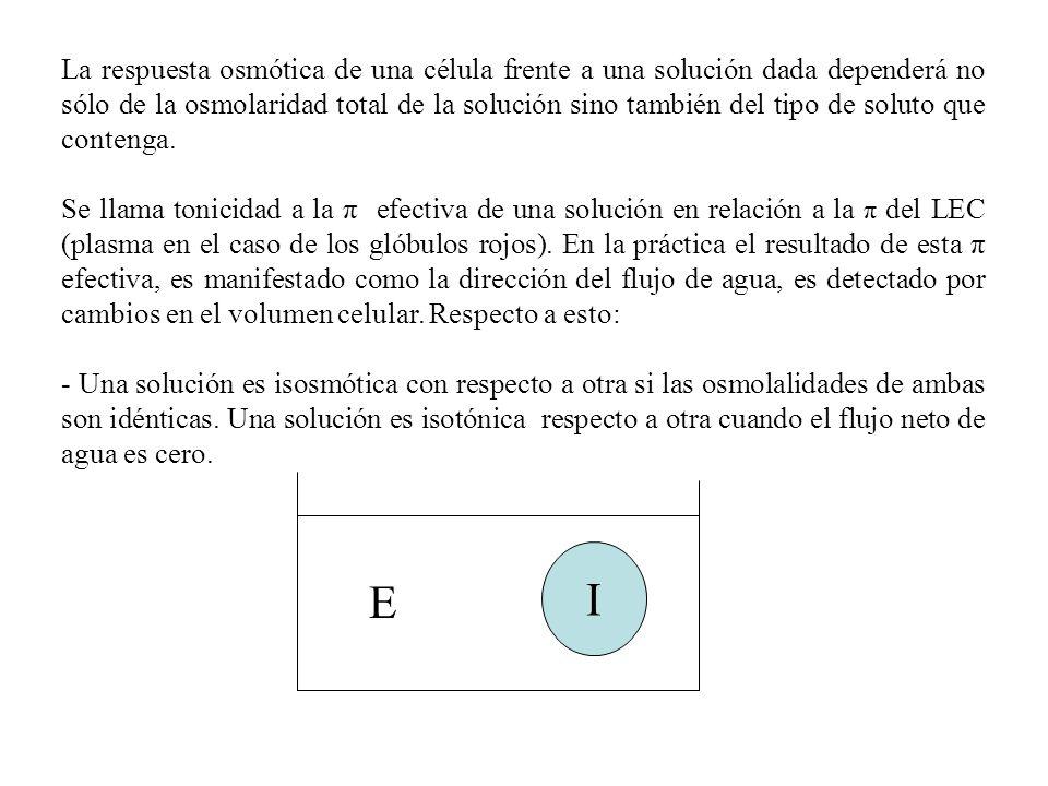 La respuesta osmótica de una célula frente a una solución dada dependerá no sólo de la osmolaridad total de la solución sino también del tipo de solut