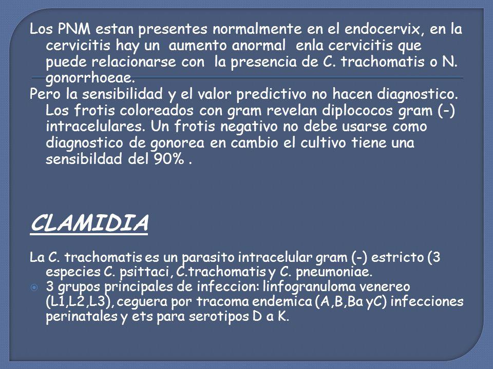 Los PNM estan presentes normalmente en el endocervix, en la cervicitis hay un aumento anormal enla cervicitis que puede relacionarse con la presencia de C.