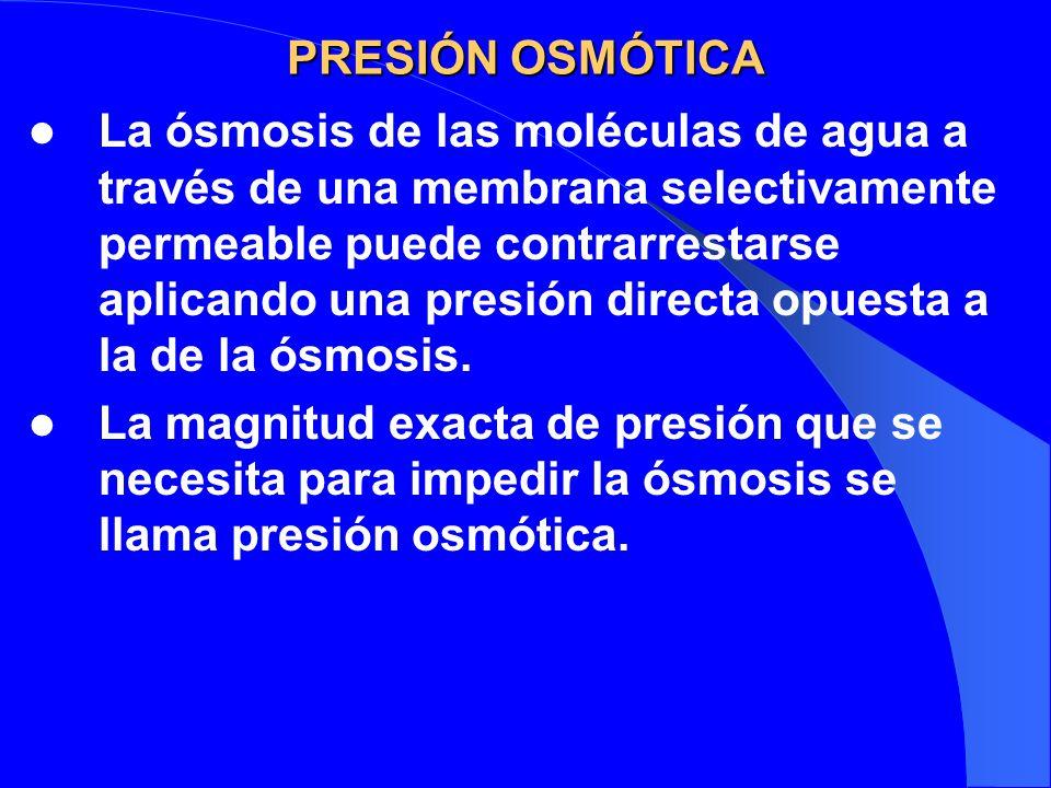PRESIÓN OSMÓTICA La ósmosis de las moléculas de agua a través de una membrana selectivamente permeable puede contrarrestarse aplicando una presión dir