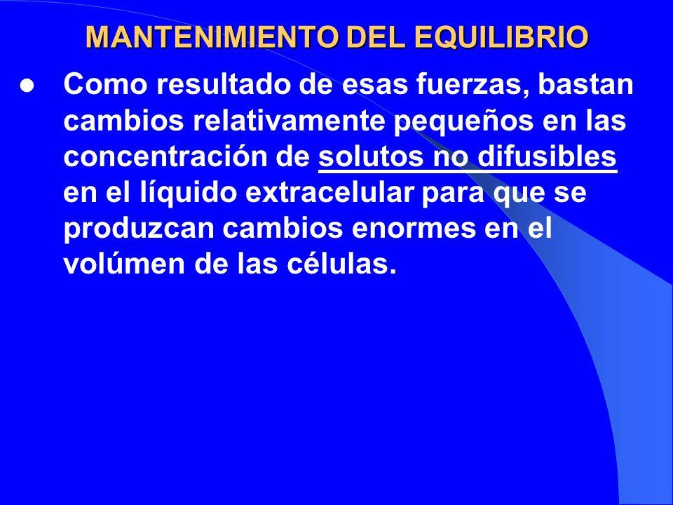 MANTENIMIENTO DEL EQUILIBRIO Como resultado de esas fuerzas, bastan cambios relativamente pequeños en las concentración de solutos no difusibles en el