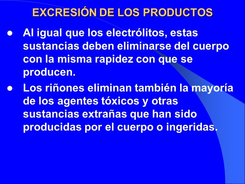 EXCRESIÓN DE LOS PRODUCTOS Al igual que los electrólitos, estas sustancias deben eliminarse del cuerpo con la misma rapidez con que se producen. Los r