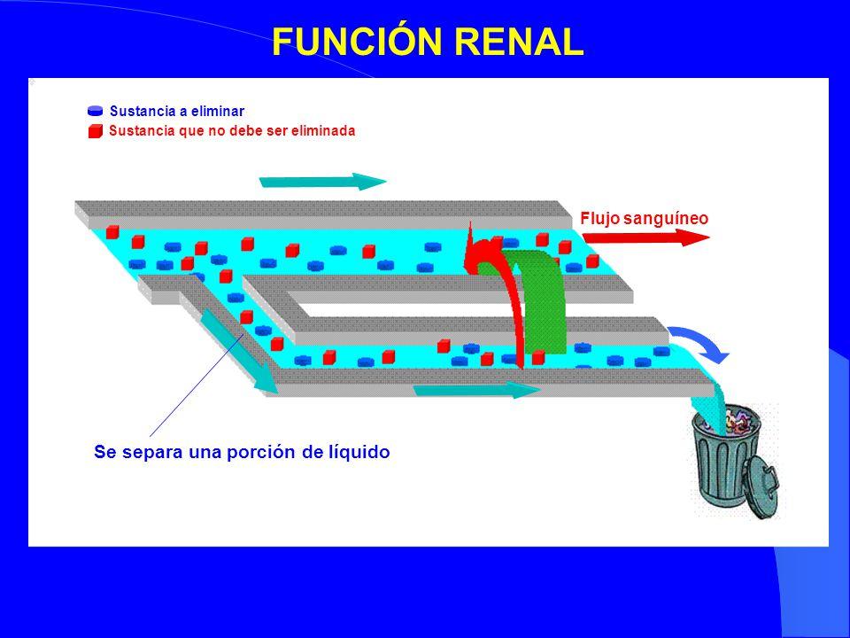 Sustancia a eliminar Sustancia que no debe ser eliminada FUNCIÓN RENAL Flujo sanguíneo Se separa una porción de líquido
