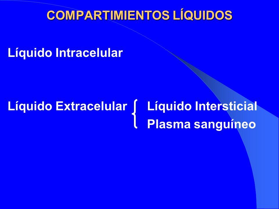 COMPARTIMIENTOS LÍQUIDOS Líquido Intracelular Líquido ExtracelularLíquido Intersticial Plasma sanguíneo