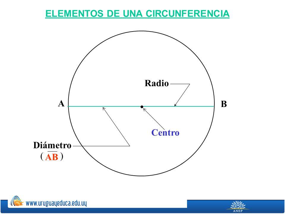 ELEMENTOS DE UNA CIRCUNFERENCIA A B Diámetro AB ( ) Centro Radio