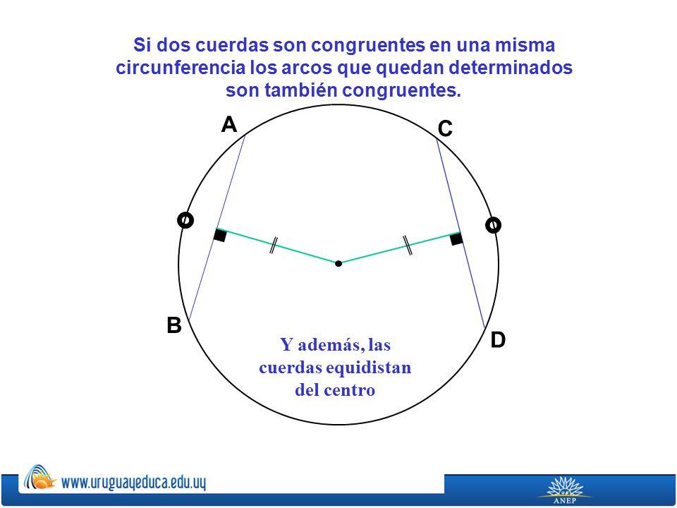 Si dos cuerdas son congruentes en una misma circunferencia los arcos que quedan determinados son también congruentes.