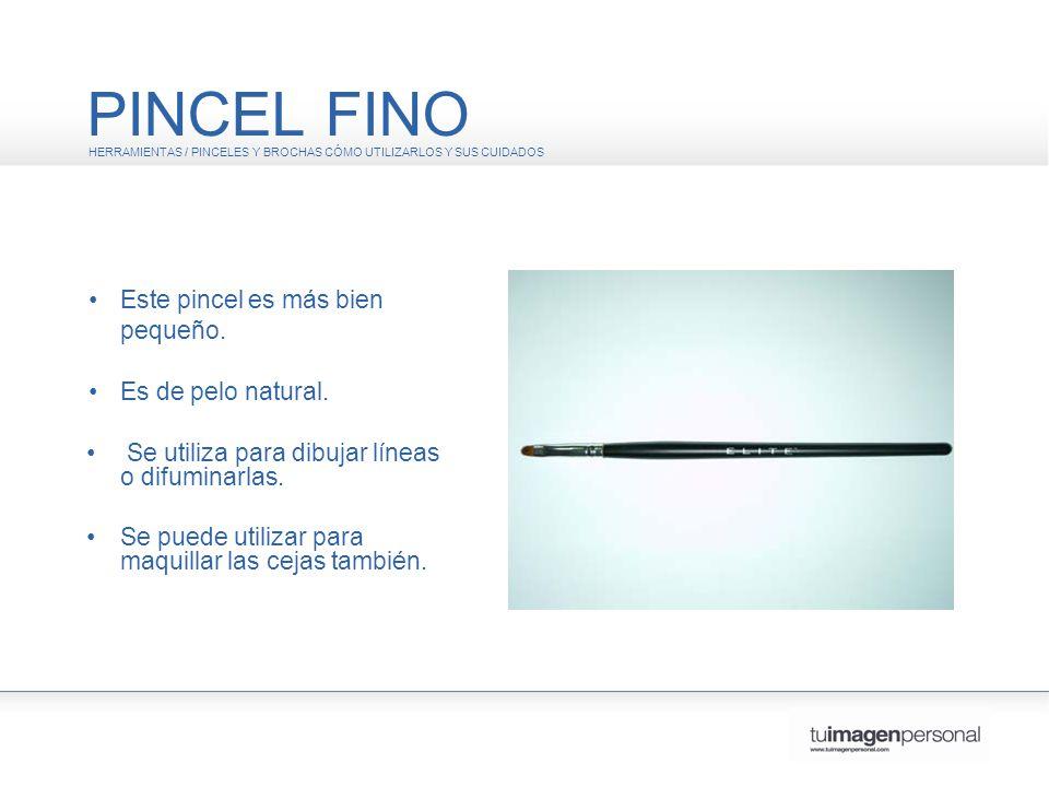 PINCEL FINO HERRAMIENTAS / PINCELES Y BROCHAS CÓMO UTILIZARLOS Y SUS CUIDADOS Este pincel es más bien pequeño.