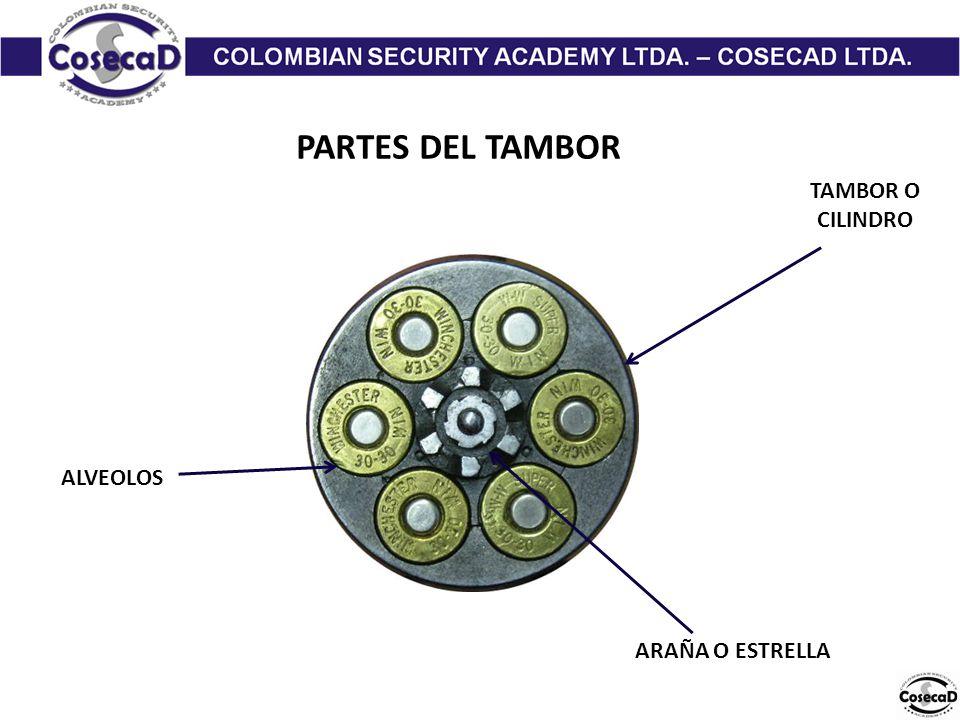 TAMBOR O CILINDRO ALVEOLOS ARAÑA O ESTRELLA PARTES DEL TAMBOR
