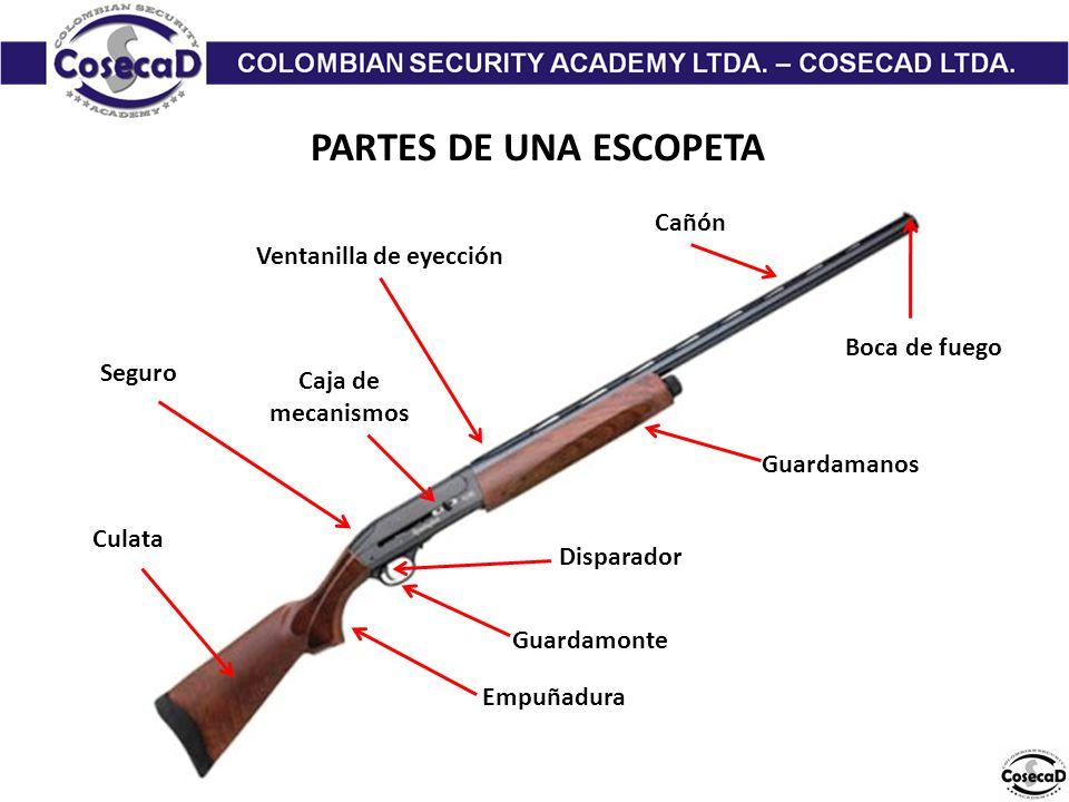 PARTES DE UNA ESCOPETA Cañón Guardamanos Guardamonte Disparador Empuñadura Culata Caja de mecanismos Boca de fuego Seguro Ventanilla de eyección