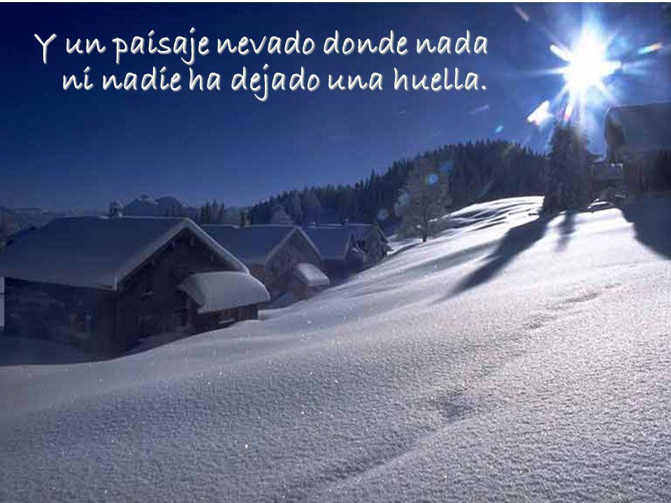 Y un paisaje nevado donde nada ni nadie ha dejado una huella.