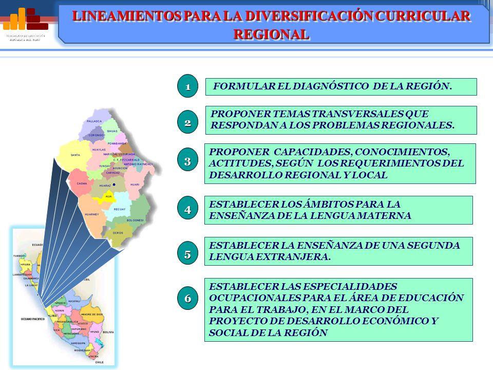 MINISTERIO DE EDUCACIÓN REPÚBLICA DEL PERÚ FORMULAR EL DIAGNÓSTICO DE LA REGIÓN.