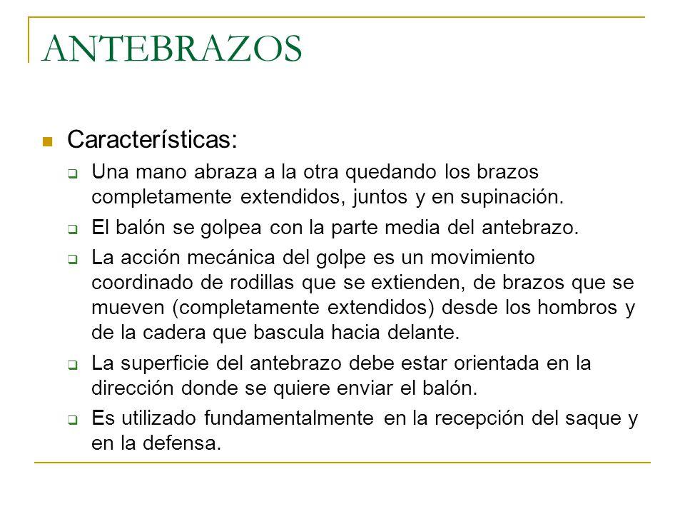 ANTEBRAZOS Características:  Una mano abraza a la otra quedando los brazos completamente extendidos, juntos y en supinación.
