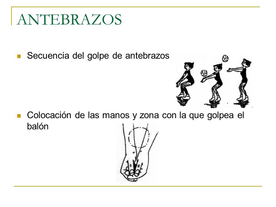 ANTEBRAZOS Secuencia del golpe de antebrazos Colocación de las manos y zona con la que golpea el balón