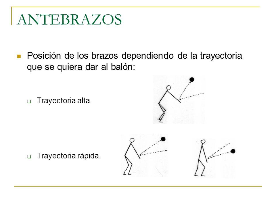 ANTEBRAZOS Posición de los brazos dependiendo de la trayectoria que se quiera dar al balón:  Trayectoria alta.