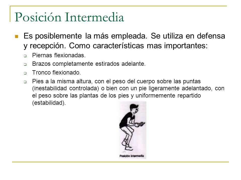 Posición Intermedia Es posiblemente la más empleada.