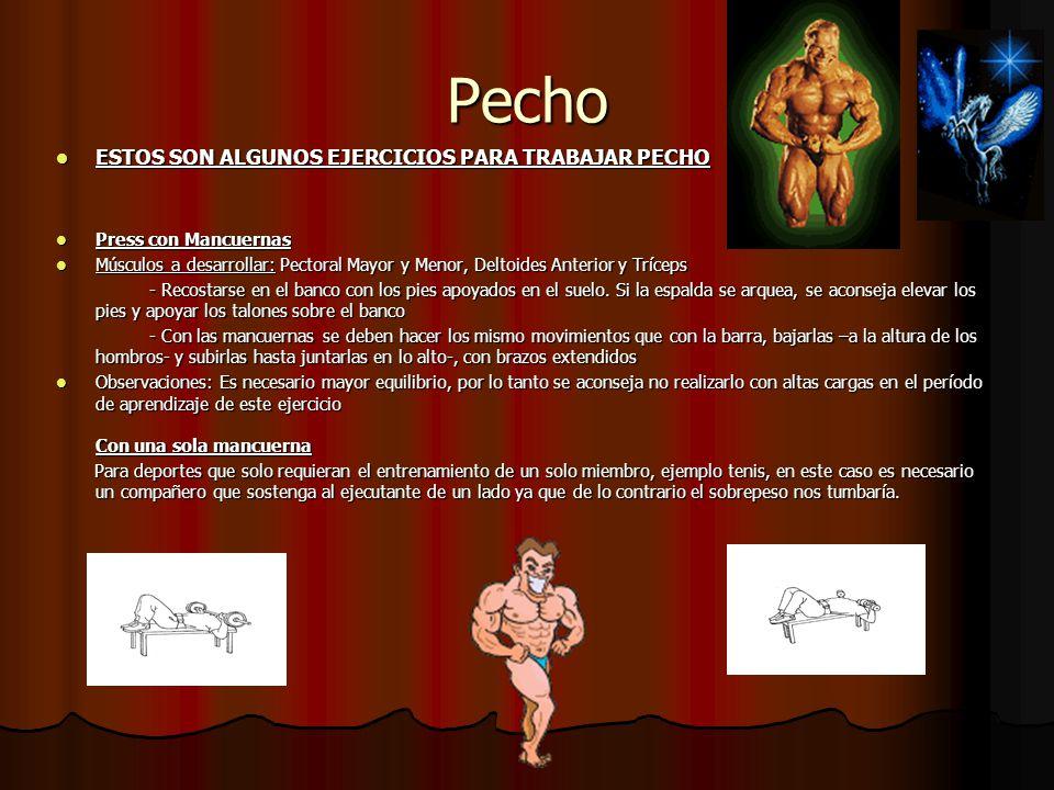 Pecho ESTOS SON ALGUNOS EJERCICIOS PARA TRABAJAR PECHO ESTOS SON ALGUNOS EJERCICIOS PARA TRABAJAR PECHO Press con Mancuernas Press con Mancuernas Músc
