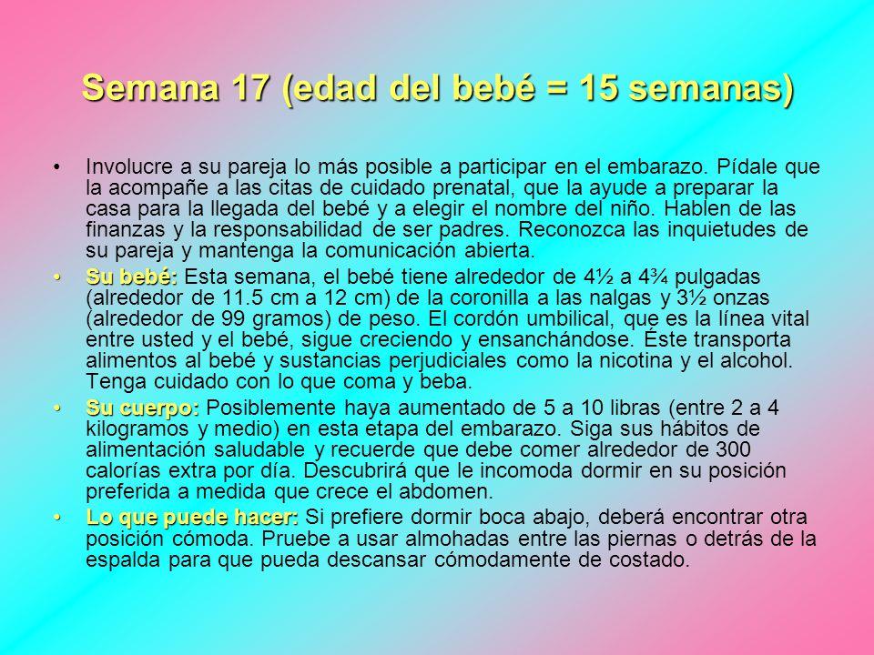Contemporáneo 17 Semanas De Embarazo La Anatomía Modelo - Anatomía ...