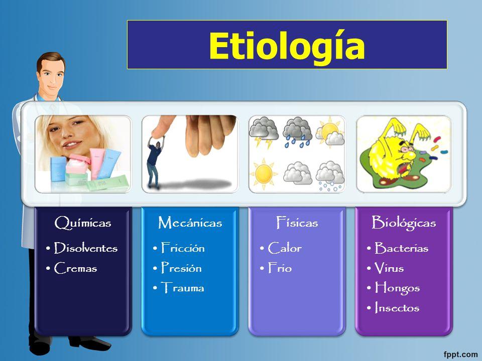 Dermatitis Contacto Atópica Seborreica Rascado Exfoliativa Herpetiforme Ponfolix Por estasis Numular Tipos de Dermatitis