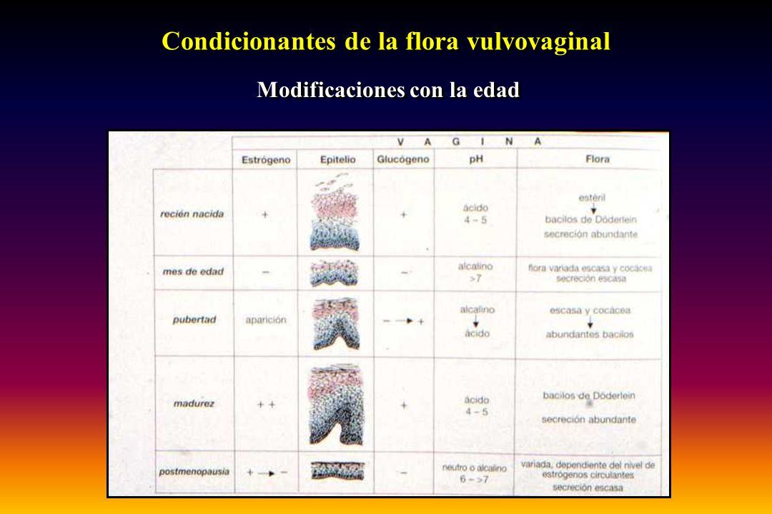 Condicionantes de la flora vulvovaginal Modificaciones con la edad