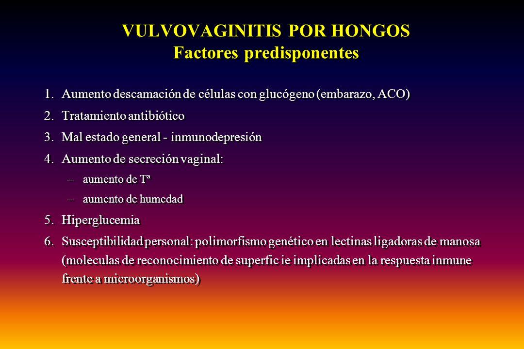 VULVOVAGINITIS POR HONGOS Factores predisponentes 1.Aumento descamación de células con glucógeno (embarazo, ACO) 2.Tratamiento antibiótico 3.Mal estad