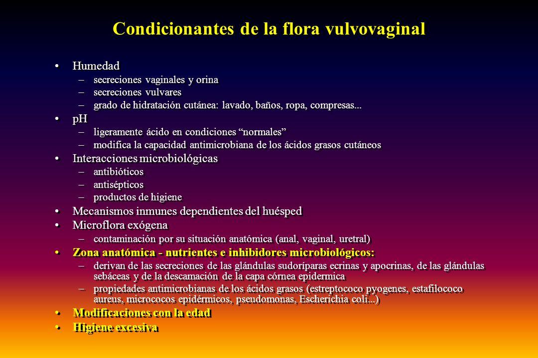 VULVOVAGINITIS POR HONGOS Candididasis resistentes C.