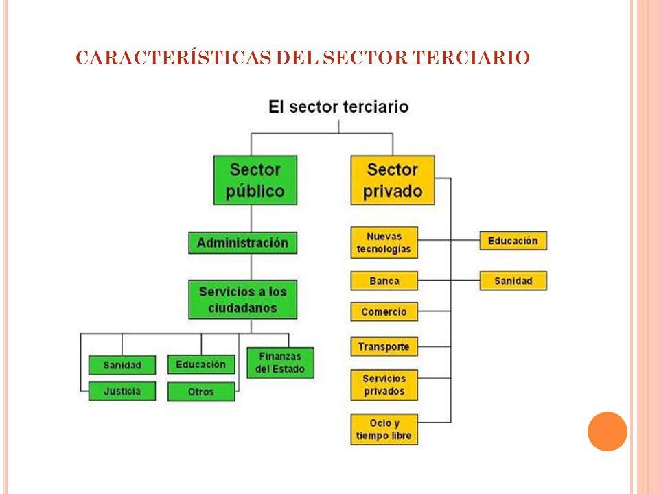 CARACTERÍSTICAS DEL SECTOR TERCIARIO