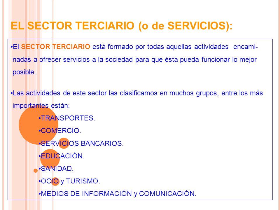 EL SECTOR TERCIARIO (o de SERVICIOS): El SECTOR TERCIARIO está formado por todas aquellas actividades encami- nadas a ofrecer servicios a la sociedad para que ésta pueda funcionar lo mejor posible.