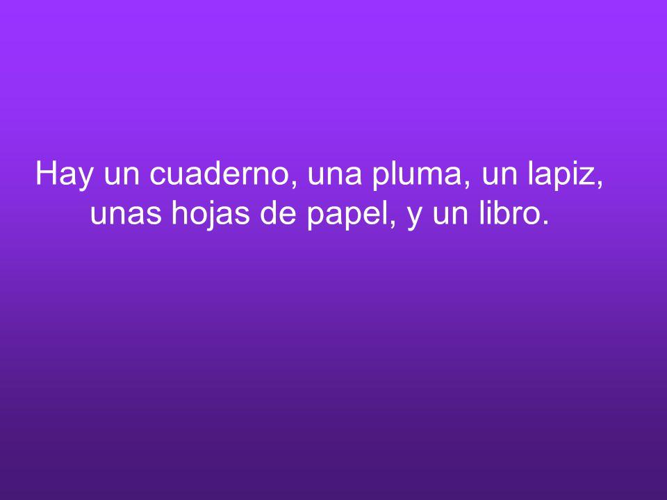 Hay un cuaderno, una pluma, un lapiz, unas hojas de papel, y un libro.